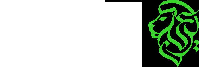 أكاديمية عرين | Areen Academy